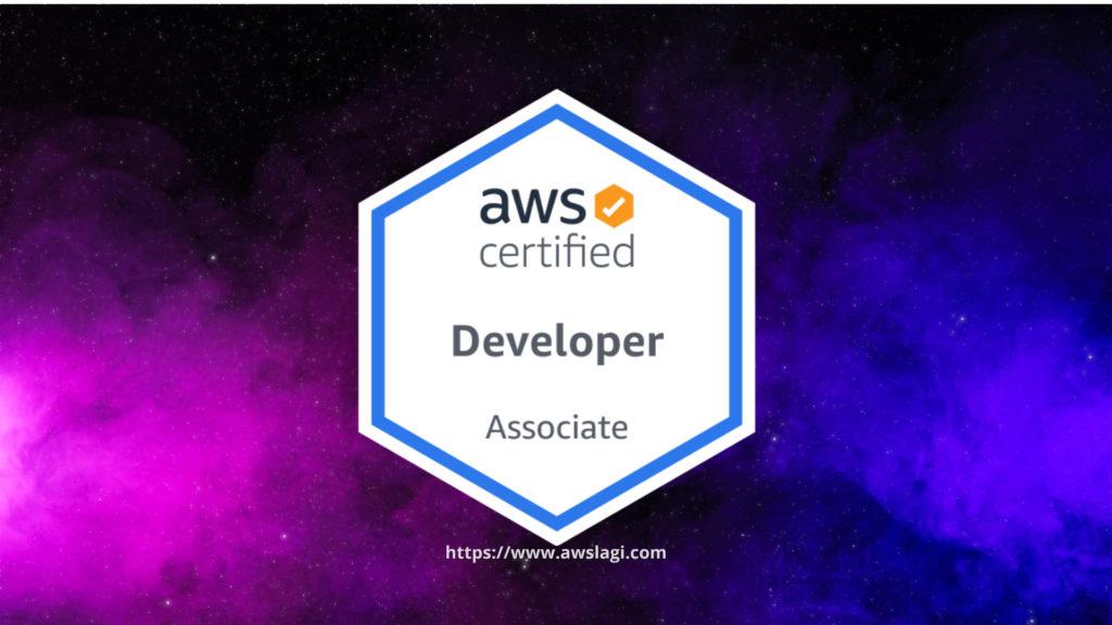 AWS Certified Developer Associate Logo