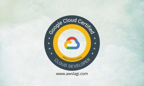 Google Professional Cloud Developer Actual Exam